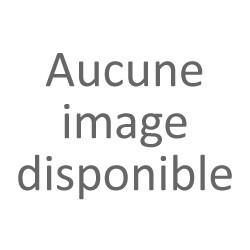 100 Vis Bois 6x180 TORX T30 Zinguée Pointe Anti-Fendage